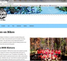 simple, responsive website design for Team BOB
