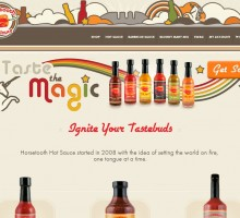 website design and company rebrand for Horsetooth Hot Sauce