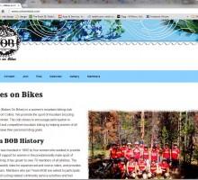 simple, responsive website design for Team BOB